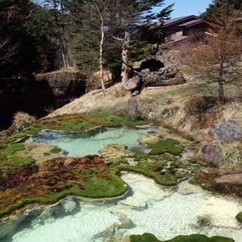 八ヶ岳登山で見られる唐沢鉱泉源泉
