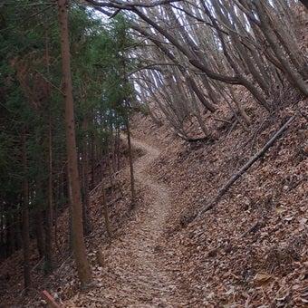 鴨沢への路