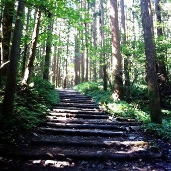 登りはじめの階段_済