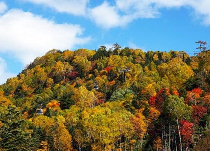 紅葉登山ができる日光白根山