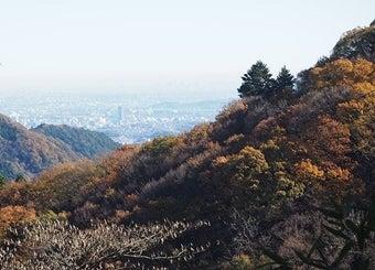 小仏峠から都心の眺め