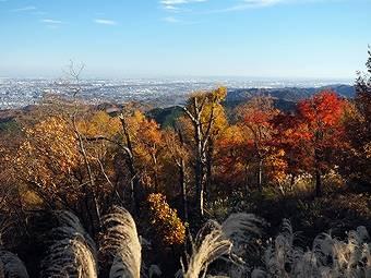 小仏峠だけではなく高尾山山頂からも見られる都心
