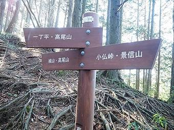 小仏峠から小仏城山へ向かう