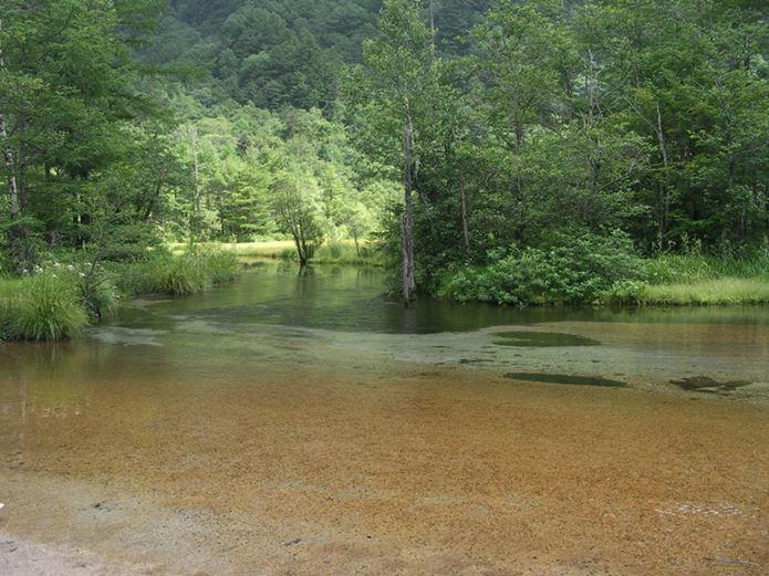 山の日に訪れたい田代池