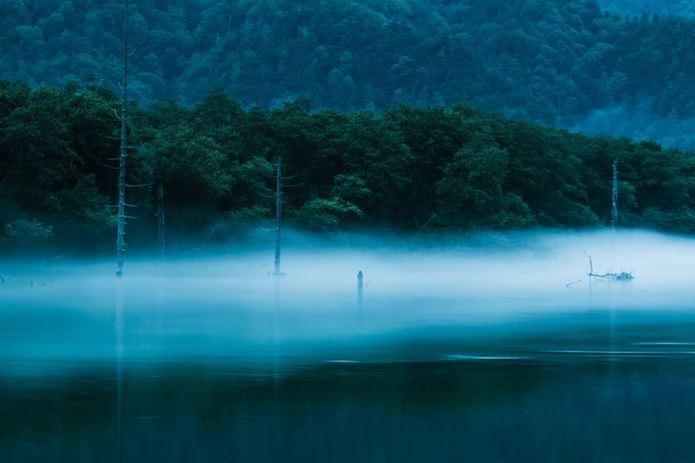 山の日は早朝の大正池へ
