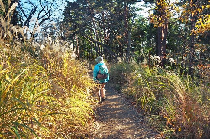 小仏峠から高尾山へハイキング