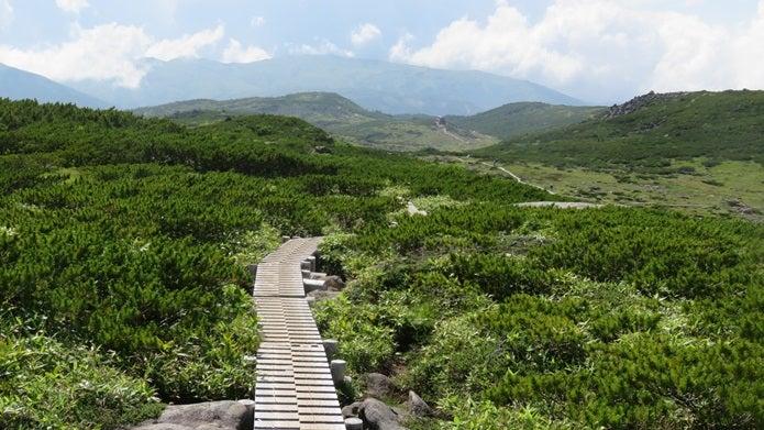登山サークルTokyo Green