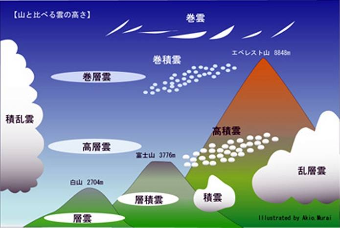 種類が多い雲