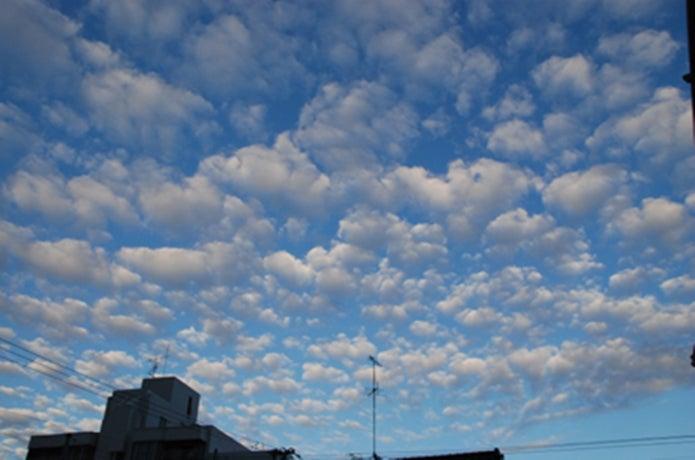 高積雲の観天望気