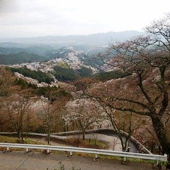吉野山登山コース紹介⑥展望