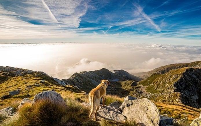 観天望気は登山で役立つ