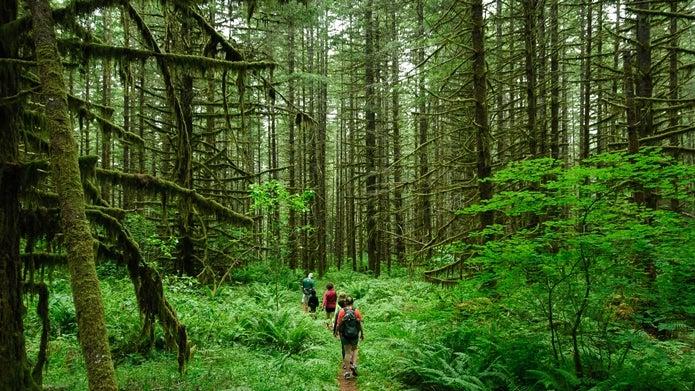 ハイキングする男女