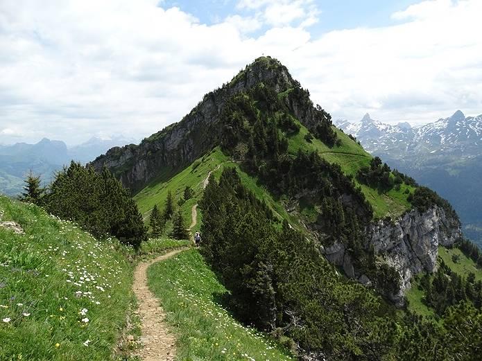 山の常識 登山道をはずれない