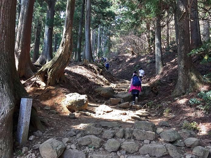 丹沢大山登山道