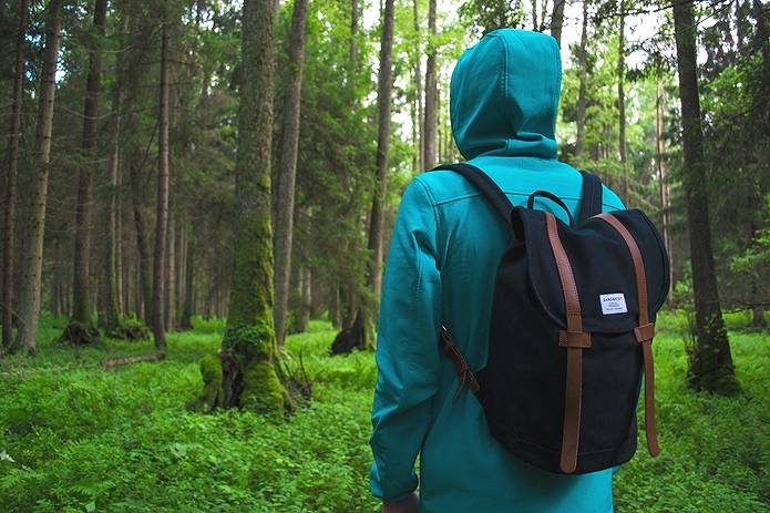 林の中で立ちすくむ人