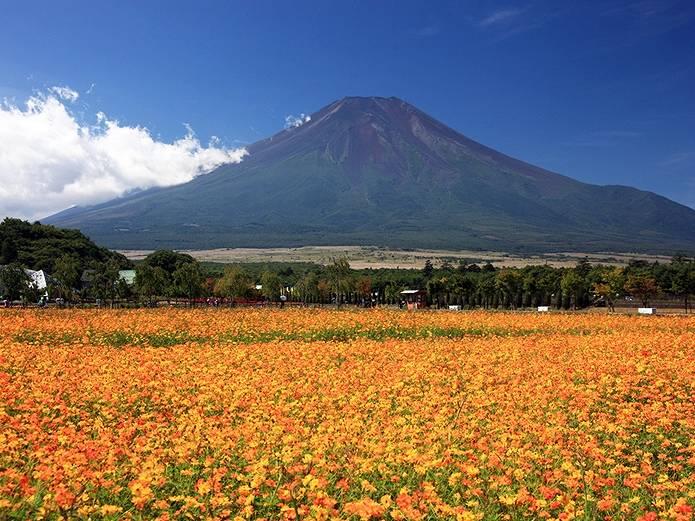 富士山 画像 オレンジ