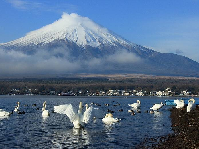 富士山 画像