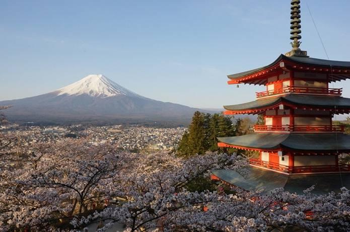 富士山 画像 桜と塔
