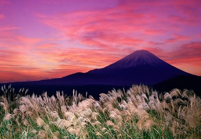 富士山 画像 すすき