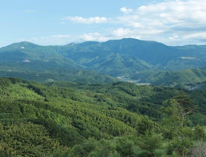 天城山の景色