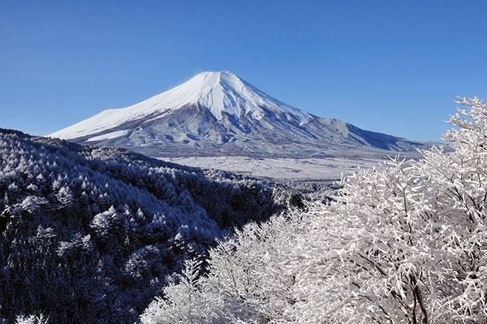 富士山 画像 樹氷