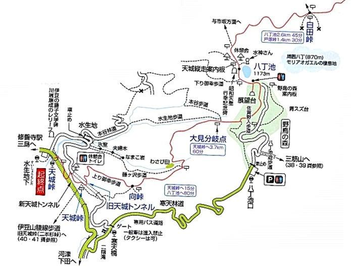 天城山の地図