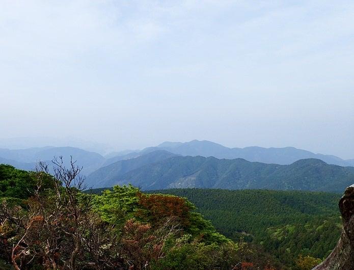 天城山の眺望