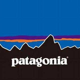 ビジネスバッグ パタゴニア
