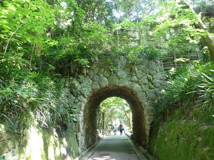 鎌倉ハイキングの道
