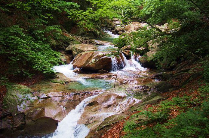 西沢渓谷の川