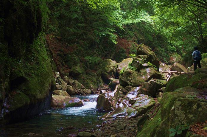 西沢渓谷のカエル岩