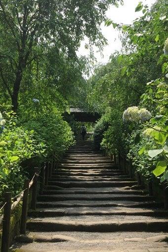 鎌倉ハイキングの階段