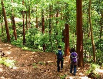 鎌倉ハイキングを楽しむ2人