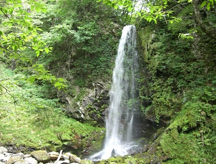 森林浴ができる高瀬峡の渓谷