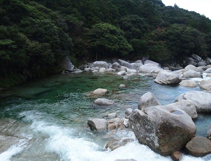 森林浴ができる横河渓谷