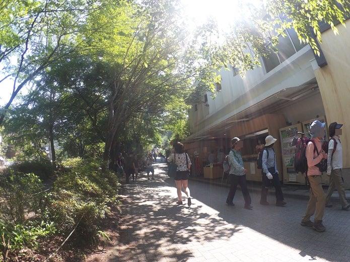 高尾山口の駅出て右側
