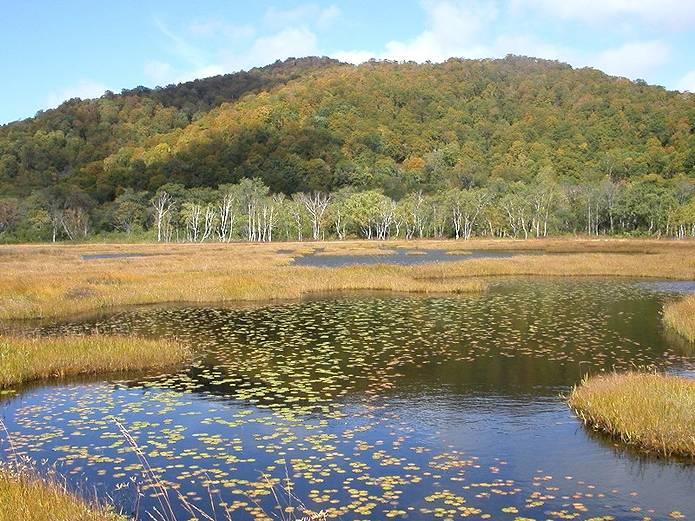 山の用語クイズ 池塘