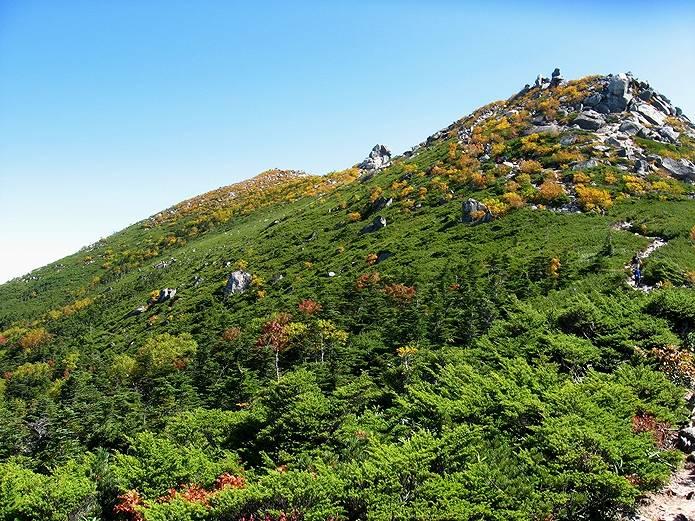 山の用語集 森林限界
