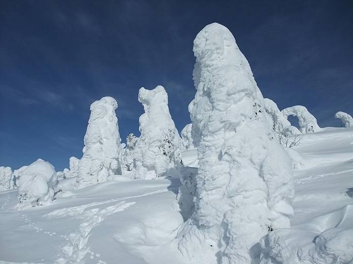 山の用語集 樹氷