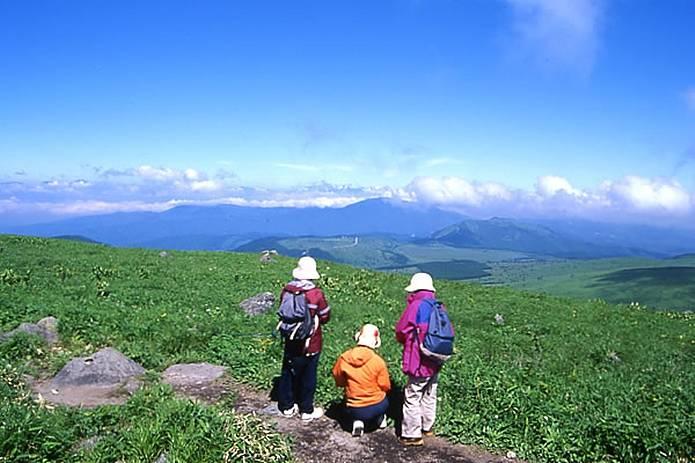 高原 霧ヶ峰ハイキング