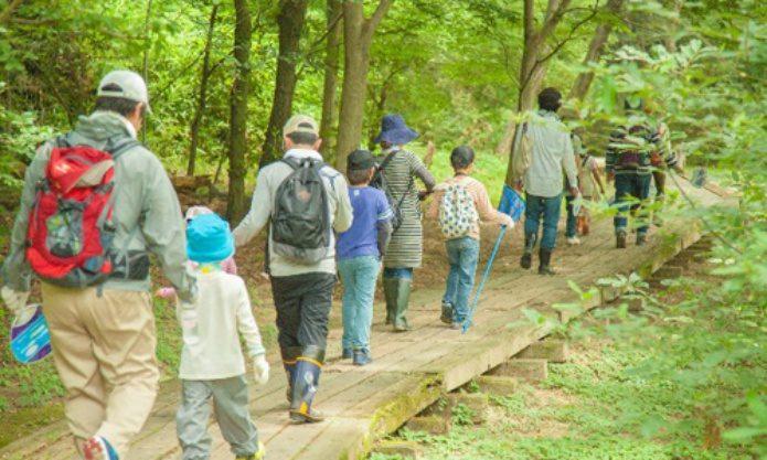 ライム病に気をつけてハイキングをする人々