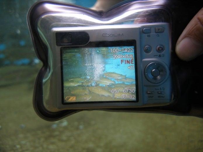 防水ケースに入ったデジタルカメラ