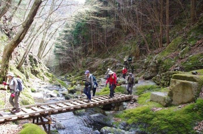 東京で登山ができる川苔山