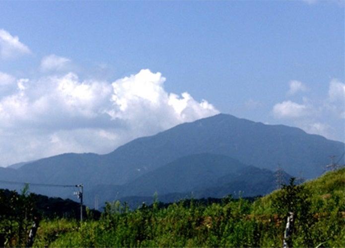 東京で登山ができる大山