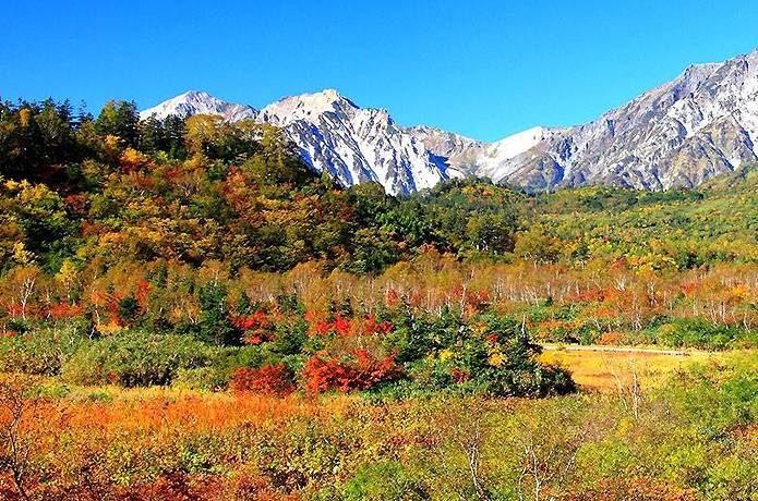 紅葉 登山 栂池高原
