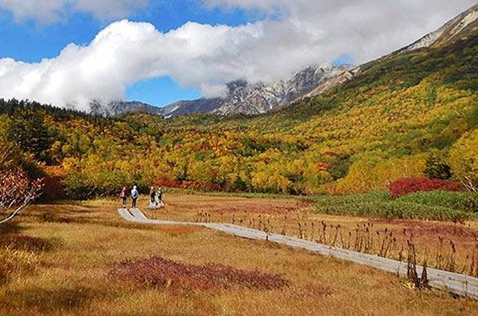 紅葉 登山 栂池自然園