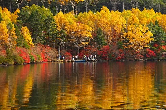 紅葉 登山 白駒池
