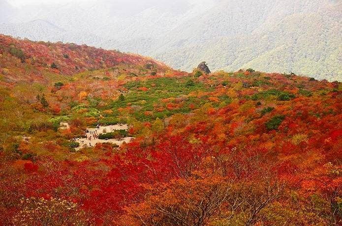 紅葉 登山 姥ヶ平