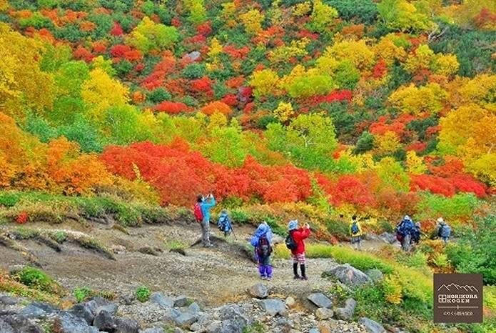 紅葉 登山者