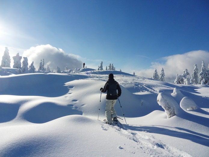 雪原をスノーシューで歩く